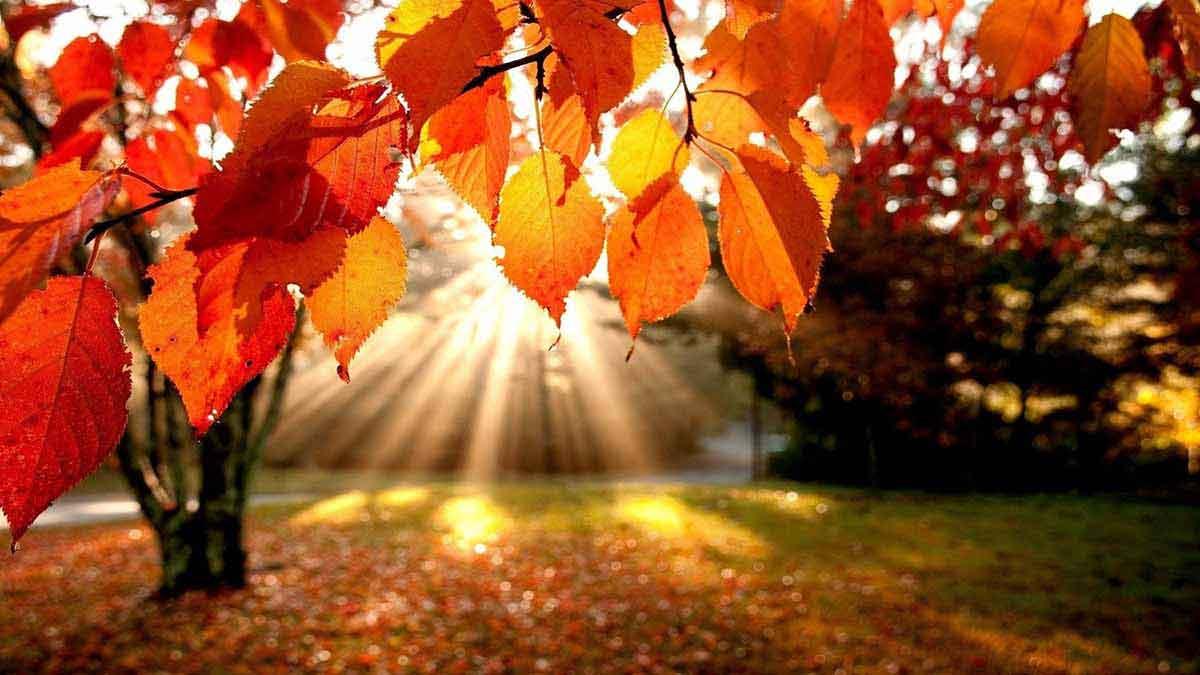 Faith retreats for autumn