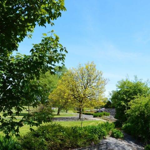 Knock Shrine grounds