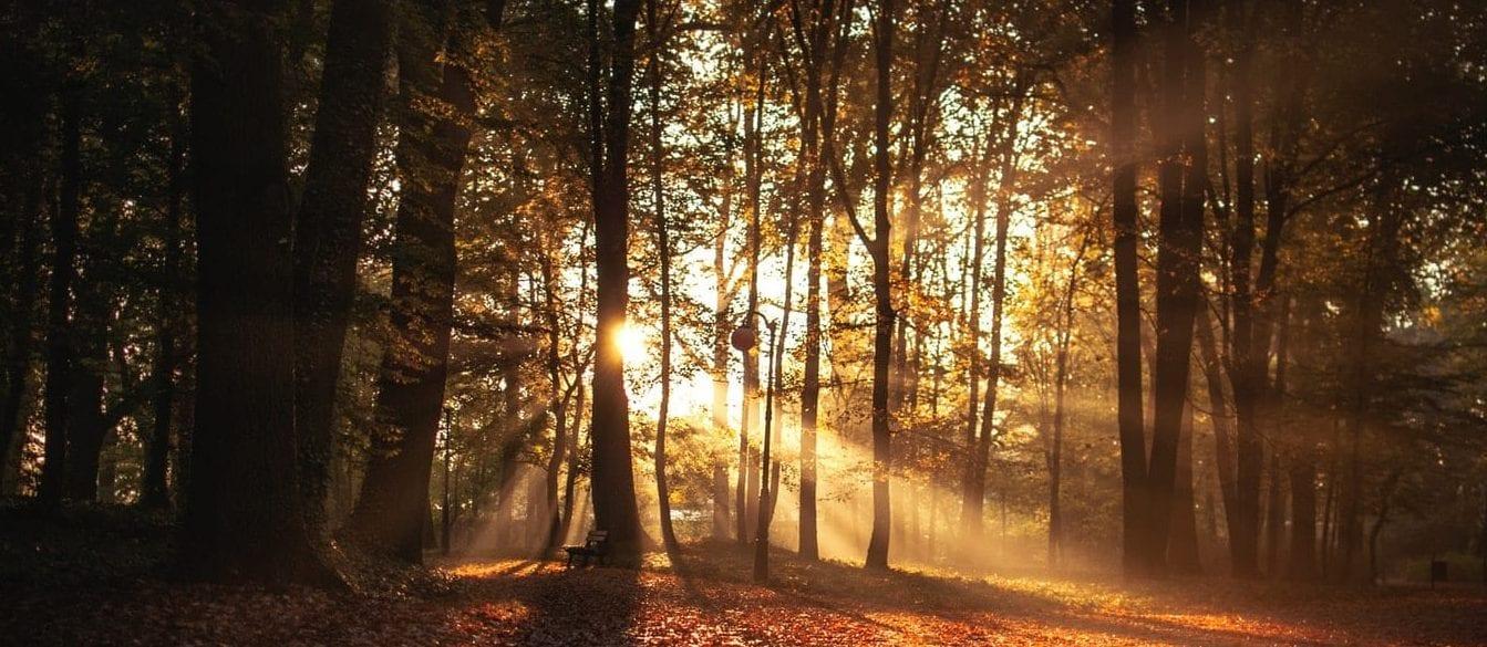 Autumn Winter Events Programme